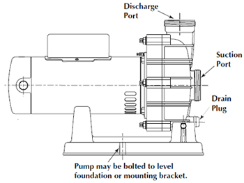 Spa Pump Replacement Guide Poolsupplyworld Blog